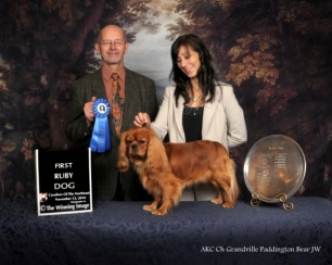 Ch Grandville Paddington Bear JW; First Ruby Dog