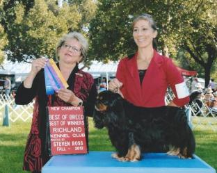 New AKC Champion! Cockney Rebel of Woodville at Grandville