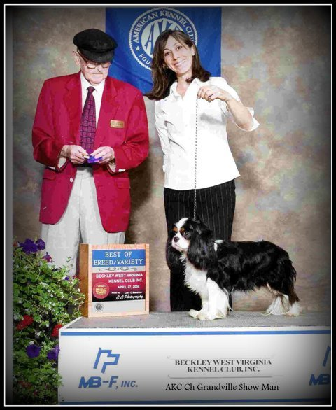 Ch Grandville Show Man; Best of Breed, presented by Breeder Leila Grandemange