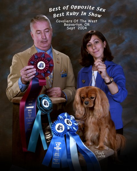Our 1st AKC Champion from 2004! AKC CH Simbab des Cavaliers de L'Ancre Bleue Marine; 5 point Major, Winner's dog and Best Ruby in Show. Presented by owner Leila Grandemange