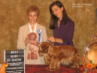 Best Ruby in Show. Ultra Spice of Woodville, Best Ruby in Show