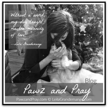 Pawz and pray Blog