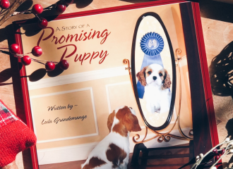 Dog book about love, empathy, self esteem, and responsible dog ownership
